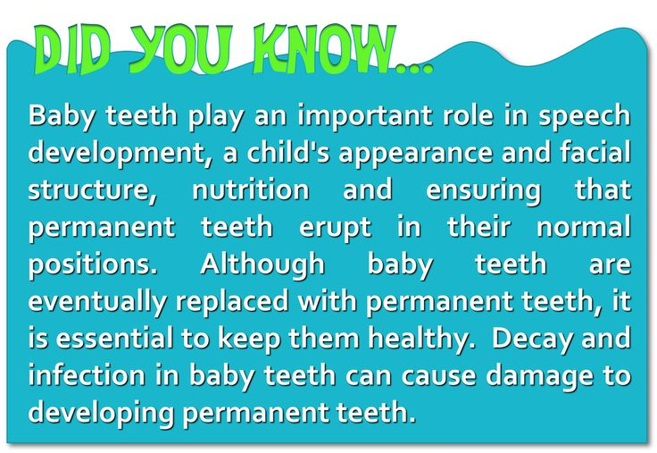 did you know baby teeth